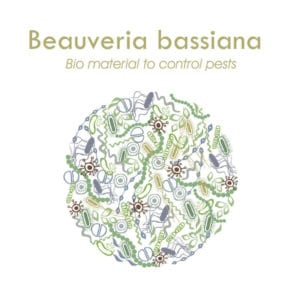 beauveria bassiana products for sale