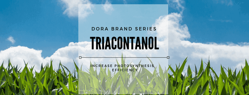 Triacontanol products