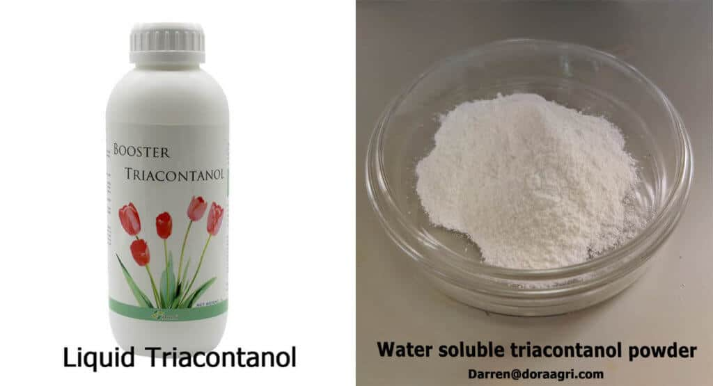 water soluble triacontanol products