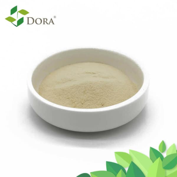Polypeptide amino acid powder