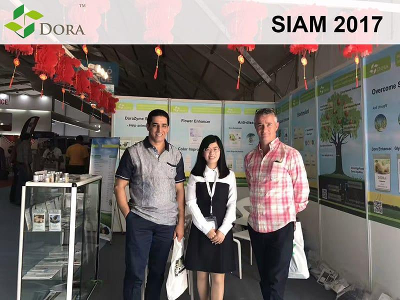 Siam 1