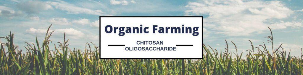 Chitosan oligosaccharide Products