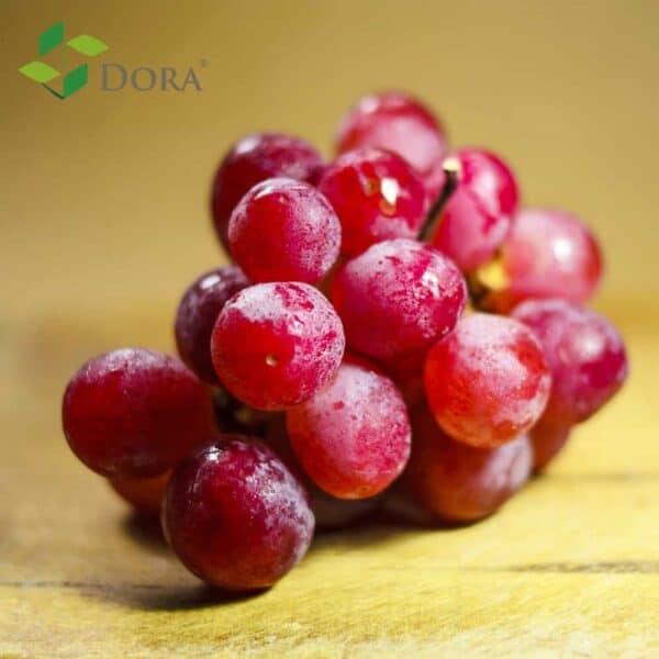 abscisic acid for grape color
