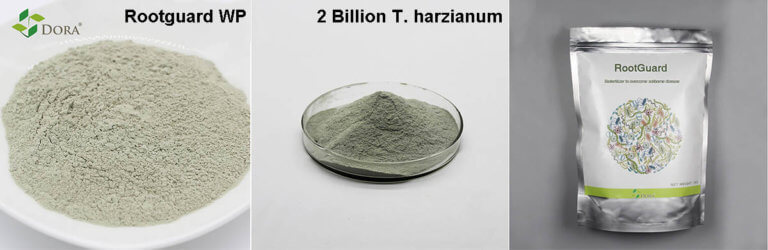 Trichoderma harzianum products