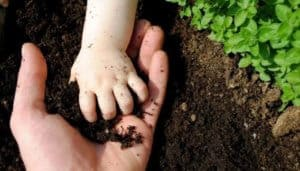 Improve soil health