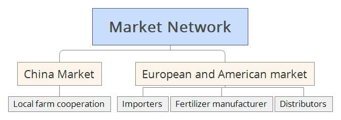 Dora agri Market Network