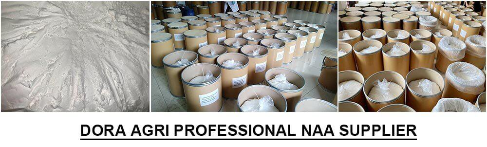 1-Naphthylacetic Acid supplier