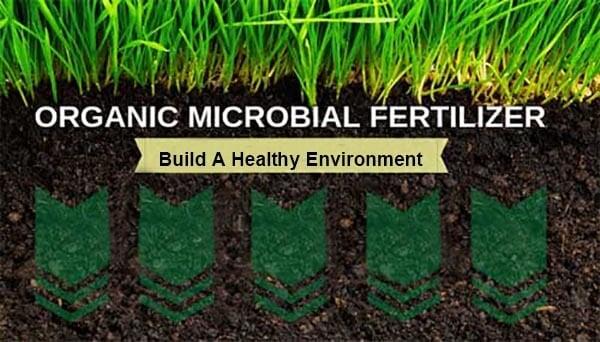 Biofertilizer for lawn