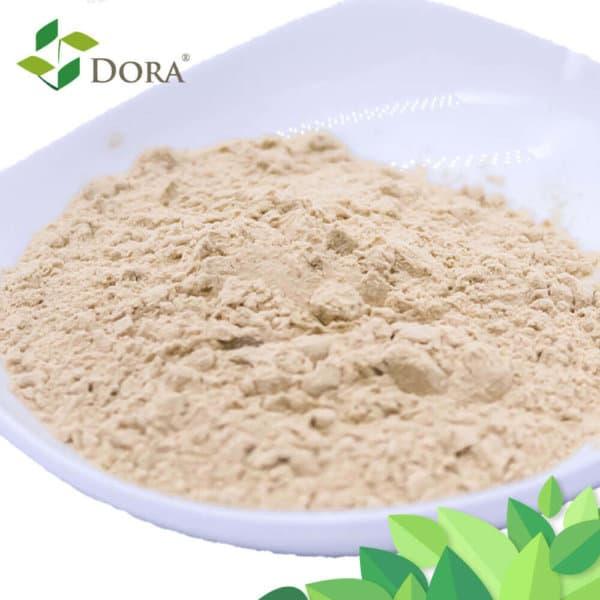kelp fertilizer powder