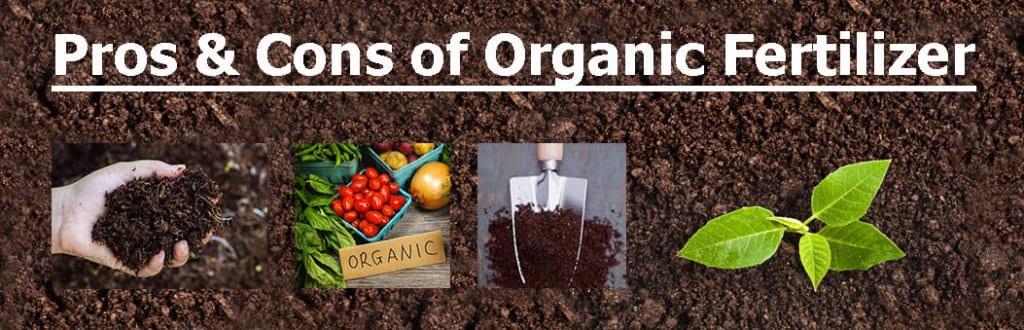 Pros & cons of organic fertilizer