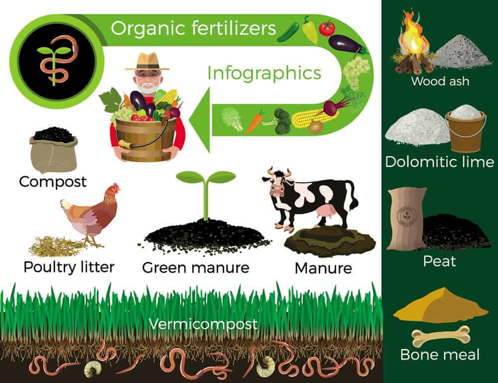 organic fertilizer definition
