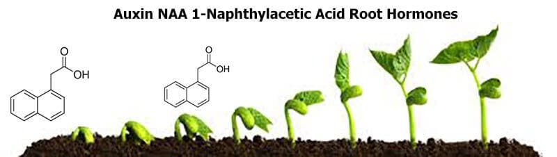NAA 1-Naphthylacetic Acid products