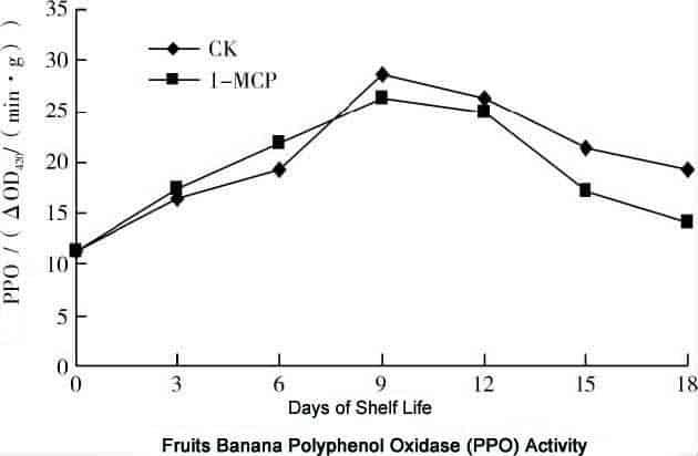 1-MCP on Fruits Banana Polyphenol Oxidase (PPO) Activity