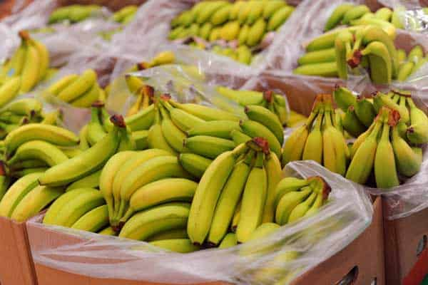 1-MCP on Fruits Banana