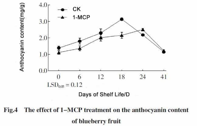 1-MCP on blueberry Anthocyanin content