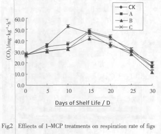 1-MCP on figs respiration rate