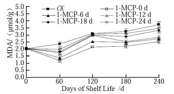 1-MCP on apple MDA content