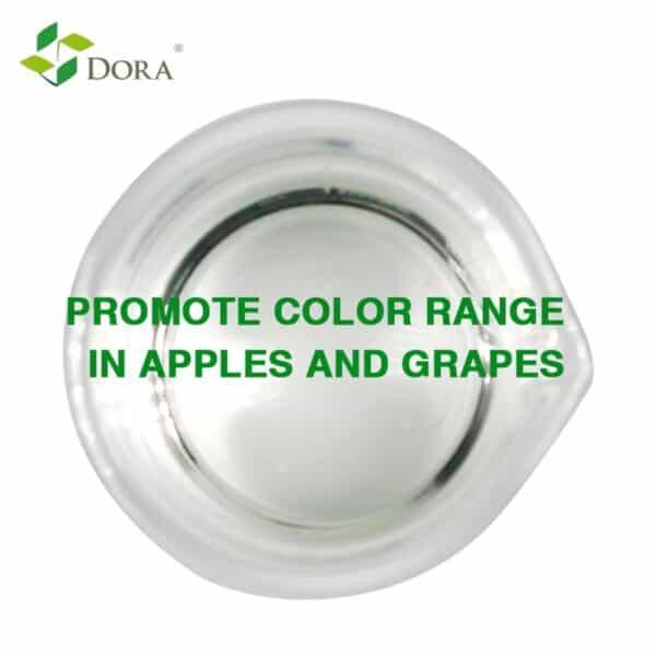 Propyl Dihydrojasmonate PDJ Grape Colorant Agent